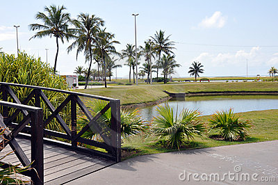 Aracaju Public Park Editorial Stock Image