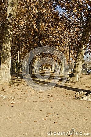 Aranjuez Gardens - Spain