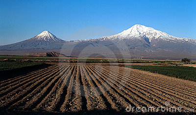 Ararat valley