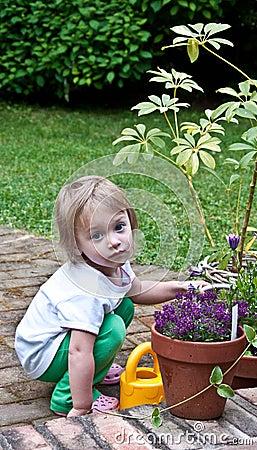 Arbeta i trädgården hemligheten