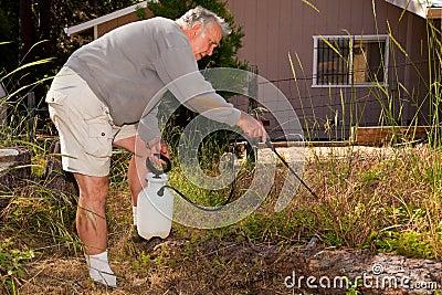 Arbeta i trädgården pensionär