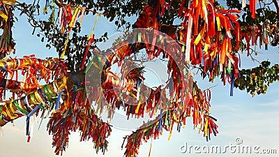 Souhaitez l'arbre avec les rubans rouges en crimée - en ukraine