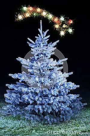 Arbre givré par Noël
