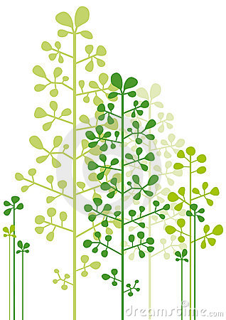 Arbres verts abstraits