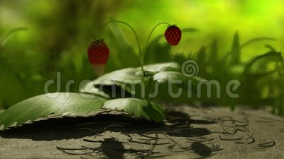 Arbusto de morango ilustração do vetor