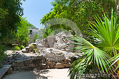 Archaeological ruins in the jungle