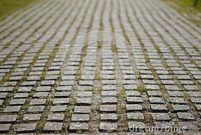 Archaeology pavement
