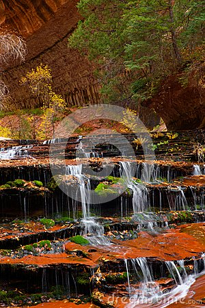 Free Archangel Cascades During Fall In The Beautiful Subway Slot Canyon At Zion National Park Stock Photos - 105333433