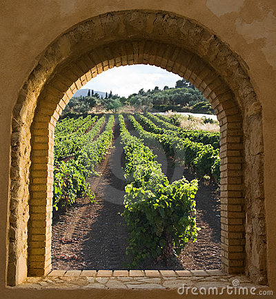 Free Arched Window On The Vineyard Royalty Free Stock Photos - 13777768