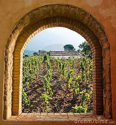 Free Arched Window On The Vineyard Royalty Free Stock Images - 6672759