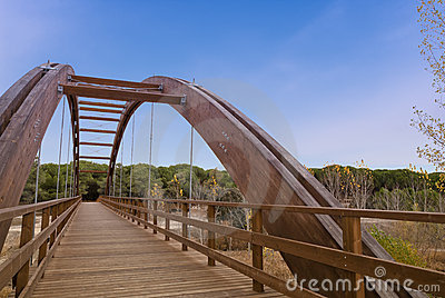 Arched wood bridge in forest