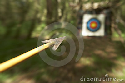 ARCHERY ARROW AIMING AT TARGET IN WOODLAND