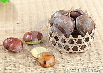 Archidendron Jiringa seed
