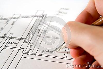 Architect with blueprint