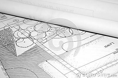 Architectural landscape plan