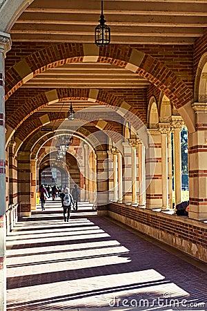 Architecture Indicating University Environment