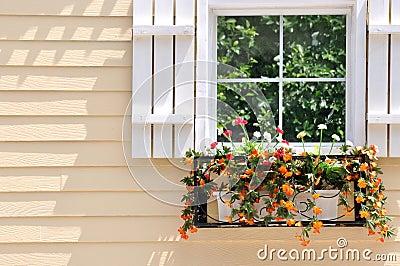 Architettura colorata e finestra