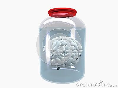 Archive minds