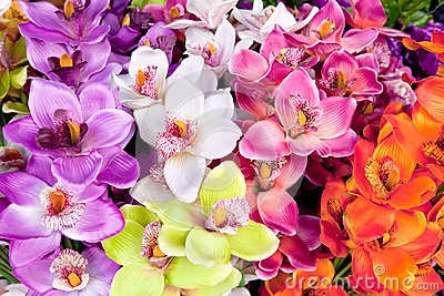 Arcolorful of artificial  orchid flower