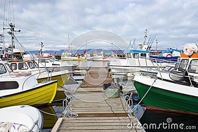 Arctic Fishing Fleet