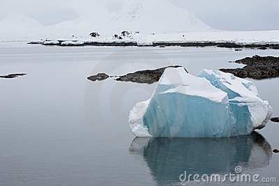 Arctic landscape, blue ice in the fjord