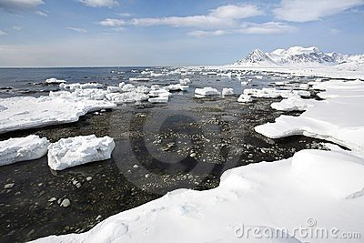 Arctic landscape,ice on the shore
