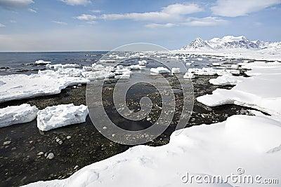 Arctic landscape,ice on the shore
