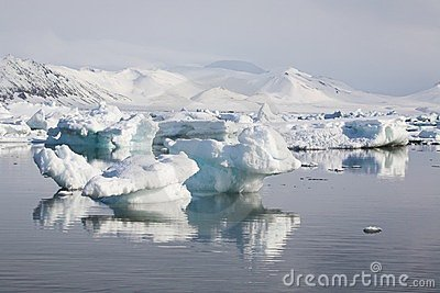 Arctic landscape,ice in the water