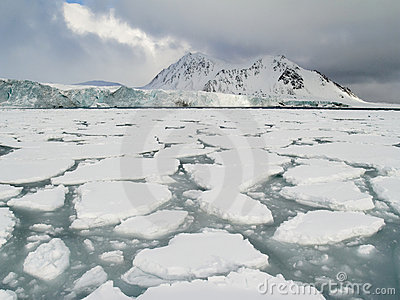 Arctic Ocean - pack ice on the sea surface