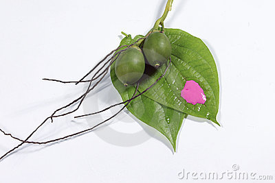 Areca and betel
