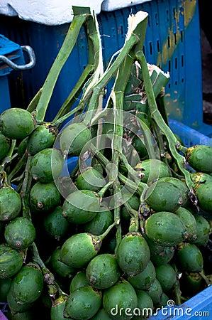 Free Areca Nut Royalty Free Stock Photography - 25624357