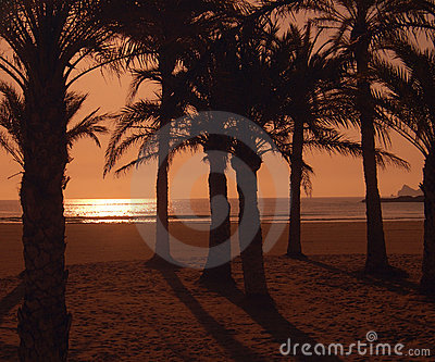 Arenel beach