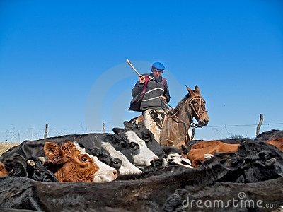 Argentinian gaucho Editorial Stock Photo