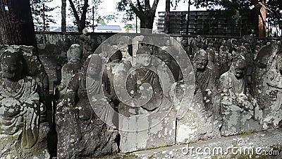 Arhats, Kawagoe, Japonia zbiory wideo