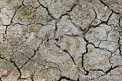 Arid ground