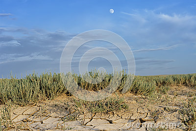 Arid landscape with cracked mud