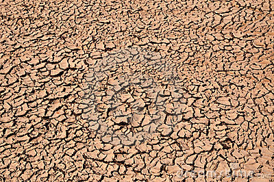 Arid Soil Stock Photography - Image: 14015362