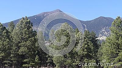 Arizona, asta de bandera, una opinión más cercana del pico de Humphreys, la montaña más alta de A de Arizona en 12.633 pies almacen de metraje de vídeo