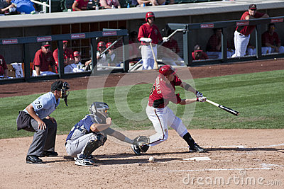 MLB Cactus League Spring Training Batter Editorial Image