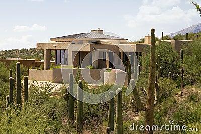 Arizona golf course scenic landscape and home