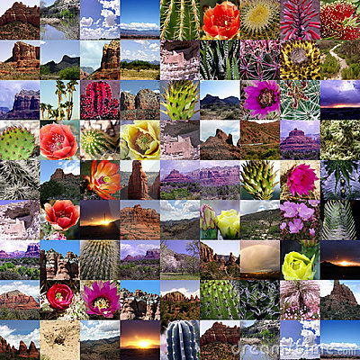 Arizona Highways Collection
