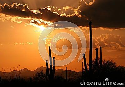 Arizona Hot Sunset
