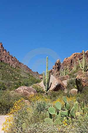 Arizona s Superstition Mountains