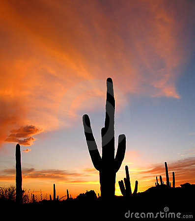 Free Arizona Sunset Royalty Free Stock Images - 2112079