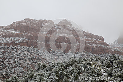 Arizona Winter Landscape