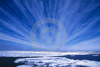 Arktiska skies