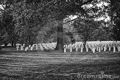 Arlington Cemetery in Black and White