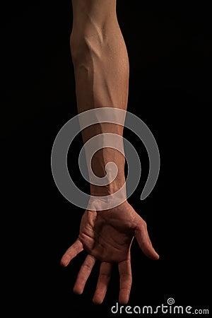 Free Arm Body Shapes Royalty Free Stock Photos - 93767798