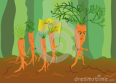 Army of genetically modified carrots