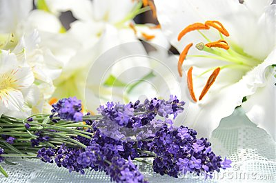 Aromatic flowers